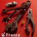 vd2014_frantz01